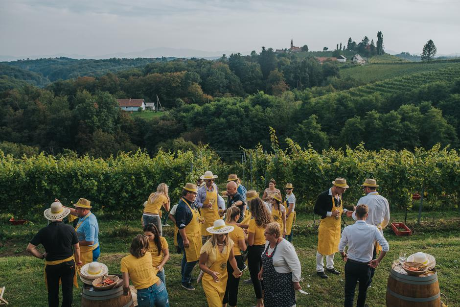 | Author: Puklavec Family Wines